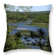River And Trees Throw Pillow