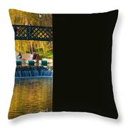 River Cam Throw Pillow