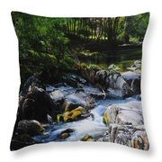River In Wales Throw Pillow