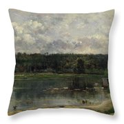 River Scene With Ducks Throw Pillow