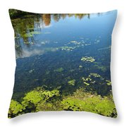 River Water Pollution Throw Pillow