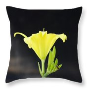 Road Side Beauty Throw Pillow