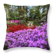 Road With Flowers Throw Pillow