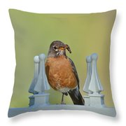 Robin With Worm I Throw Pillow