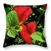 Robust Red Throw Pillow