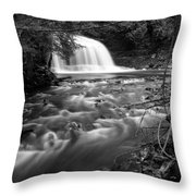 Rock River Falls Throw Pillow