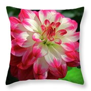 Rockin Red Throw Pillow