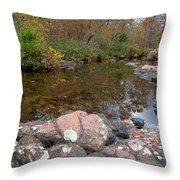 Rocky Creek Throw Pillow