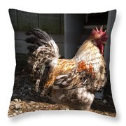 Rooster In A Coop Throw Pillow