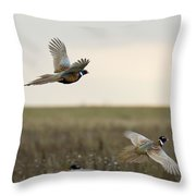 Rooster Pheasants Throw Pillow