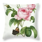 Rosa Centifolia Throw Pillow by Pierre Joseph Redoute