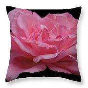 Rose - Flower Throw Pillow