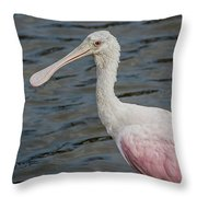 Roseate Spoonbill 3 Throw Pillow