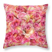 Roses Background Throw Pillow