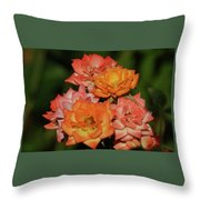 Pink And Orange Roses Throw Pillow