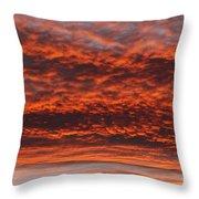 Rosy Sky Throw Pillow