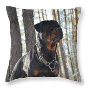 Rottweiler Kuchum Throw Pillow