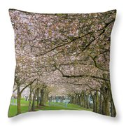 Rows Of Cherry Blossom Trees In Spring Throw Pillow