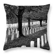 Rows Of Honor Throw Pillow