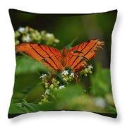 Ruddy Daggerwing Butterfly Throw Pillow