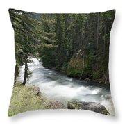 Running Through The Forest Throw Pillow