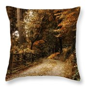 Rural Road Throw Pillow