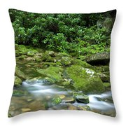 Rushing Mountain Stream Throw Pillow