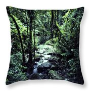 Rushing Stream El Yunque National Forest Throw Pillow