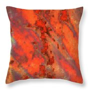 Rust Abstract Throw Pillow