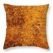 Old Forgotten Solaris Throw Pillow