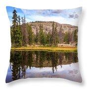 Ruth Lake Trail Throw Pillow