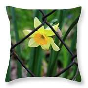 1 Sad Daffy Behind Bars Throw Pillow