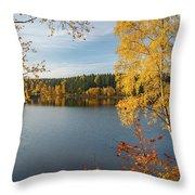 Saegemuellerteich, Harz Throw Pillow