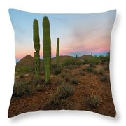 Saguaro Dusk Throw Pillow