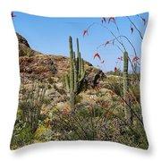 Saguaro National Park East Scene Iv Throw Pillow