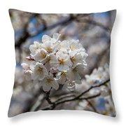 Sakura Spring Throw Pillow