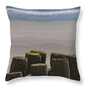 Salty Shores Throw Pillow