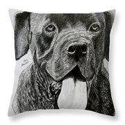 Sampson Throw Pillow