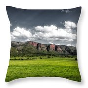 San Juan Mountains Of Colorado Throw Pillow