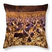 Sandhills In The Corn Throw Pillow