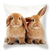 Sandy Lop Rabbits Throw Pillow