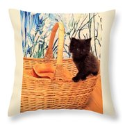 Sassy Cat Throw Pillow