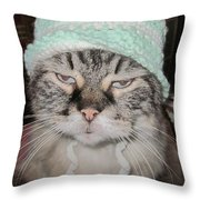 Sassy Sassy Cat Throw Pillow