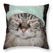 Sassy Sassy Cat Throw Pillow by David Sutter