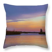 Savannah Sunset Throw Pillow
