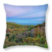 Scenic Blue Ridge Parkway Appalachians Smoky Mountains Autumn La Throw Pillow