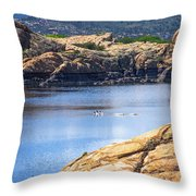 Scenic Willow Lake  Throw Pillow