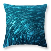School Of Barracudas Underwater Throw Pillow by MotHaiBaPhoto Prints