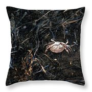 Scuttling To Safety Throw Pillow