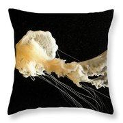 Sea Nettle Jellyfish Throw Pillow
